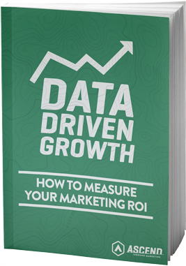 DATA-DRIVEN-GROWTH-ebook