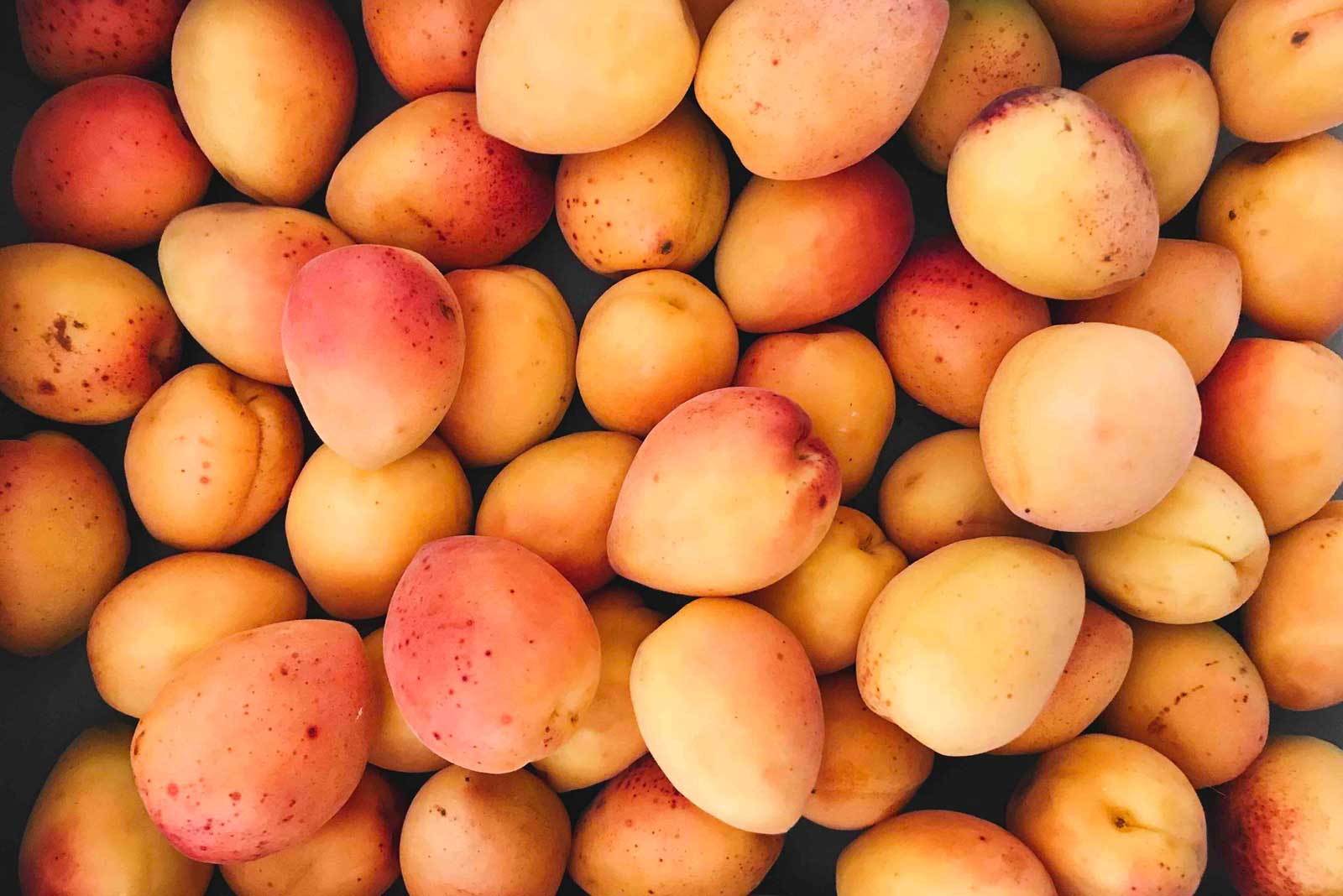 dickey-peaches-bg